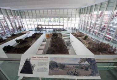 Sala central del Museo de la Evolución Humana
