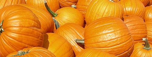 Las Calabazas, protagonistas de los disfraces de Halloween