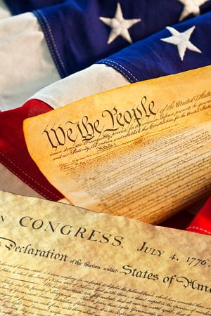Constitución Ameriana