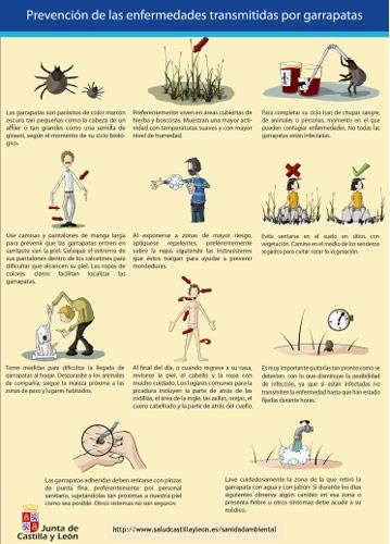 Prevención de las garrapatas