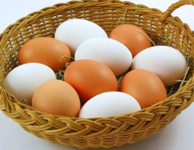 Exportación de huevos españoles a Estados Unidos