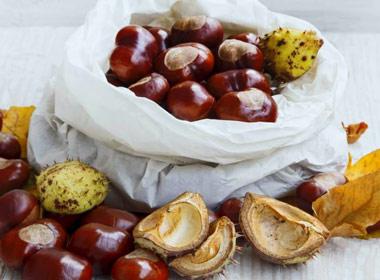 Castañas y frutos secos