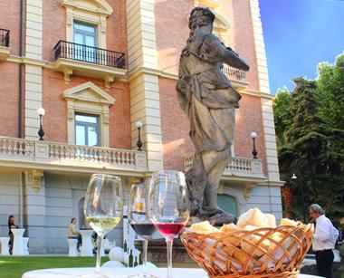 El Sabor de la Excelencia: Vinos de Castilla y León