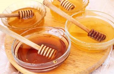 Distintos tipos de miel