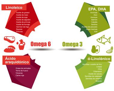 Dónde están los Omega 3 y los Omega 6