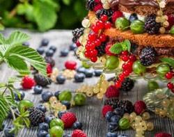 Frutos silvestres comestibles
